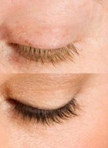 best eyelash tint Burlington Vermont